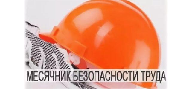 ИНФОРМАЦИОННЫЙ БЮЛЛЕТЕНЬ №30 О проведении в 2020 году в Ставропольском крае месячника безопасности труда